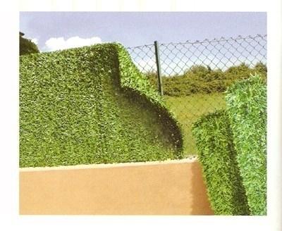 Siepe artificiale piante finte caratteristiche della for Rete con foglie finte