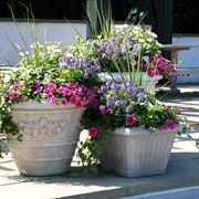 vasi e fioriere
